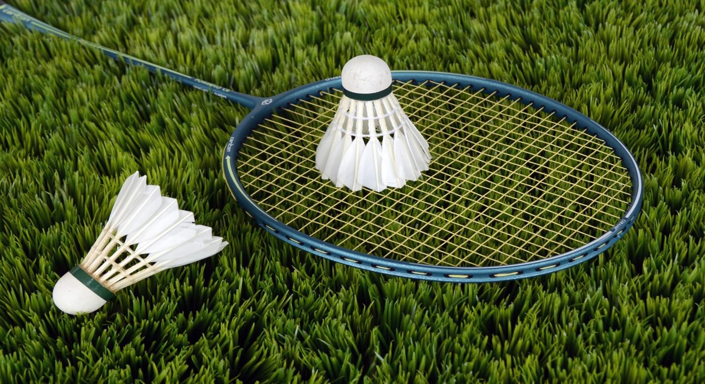 Benefits of Buying Badminton